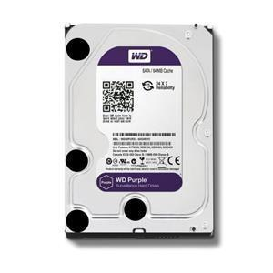 Hard Disk 1000GB 1TB Western Digital WD10PURZ 64MB Purple SATA 6 GB/s